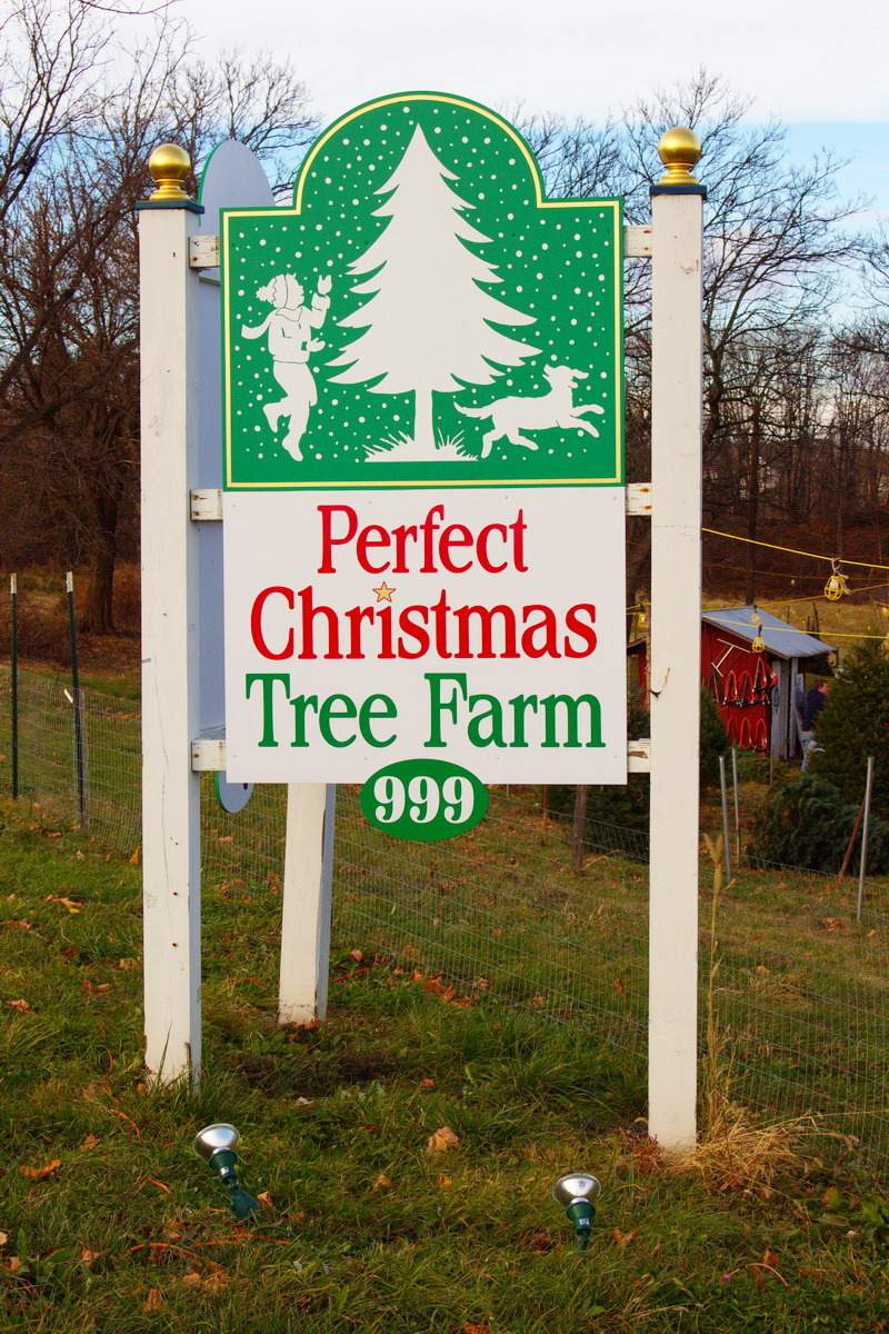 Directions – Perfect Christmas Tree Farm